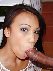 Busty asian slut in stockings gives head and gets anally crashed