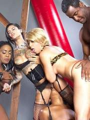 Top rated pornstars give it their all during interracial group sex fucking