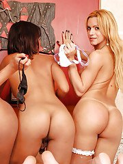Bikini clad tranny on tranny groupsex with Adryella Vendramine and friends