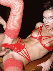 Five amazing chicks in sexy lingerie have a wild sex party