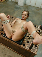 Dani Daniels caught in the act and fucked in hard bondage.
