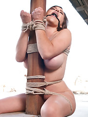 Storyline BDSM Movie with rough sex and anal.