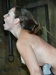 Sasha loves being treated like an animal. Stick her in a cage and it will make her