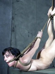Well little Miss Elise Graves I hope you are ready for a day full of rope cocks and