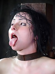 Veruca James is a classic beauty that looks way too refined to do the filthy things