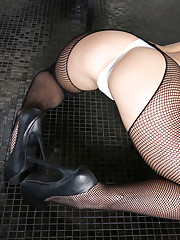 Juicy cheeked Texas beauty Abby Cross teased us all day in our favorite fishnets