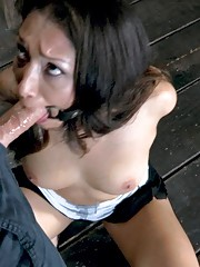 On her knees bent over a table or lying on her back Vicki Chase is about to experience