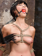 Grueling predicament bondage torment flogging nipple clamps choking pussy licking
