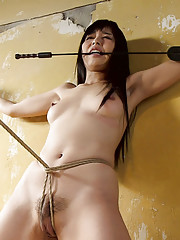 Japanese submissive Marica Hase learns to endure rough handling and Japanese style