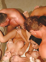 Wife Swapping Orgies And Swinger Parties