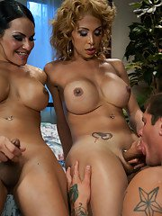 Jessica Host and Ts Foxxy tag team a hot guy in a sexy threesome - he gets his mouth