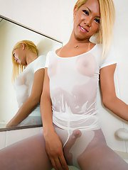 NEWHALF PRINCESS TS superstar hung angel - there are many ways to describe the newly