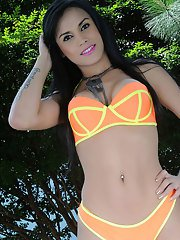 Coming back to our delicious amusement we ll have the stunning GroobyGirl Bruna Butterfly!